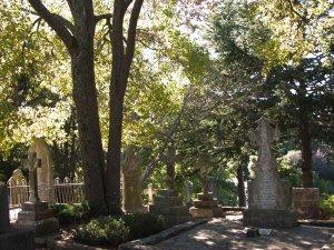 Napier Cemetery 2