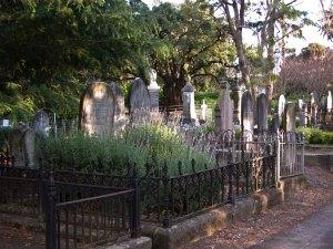 Napier Cemetery 4