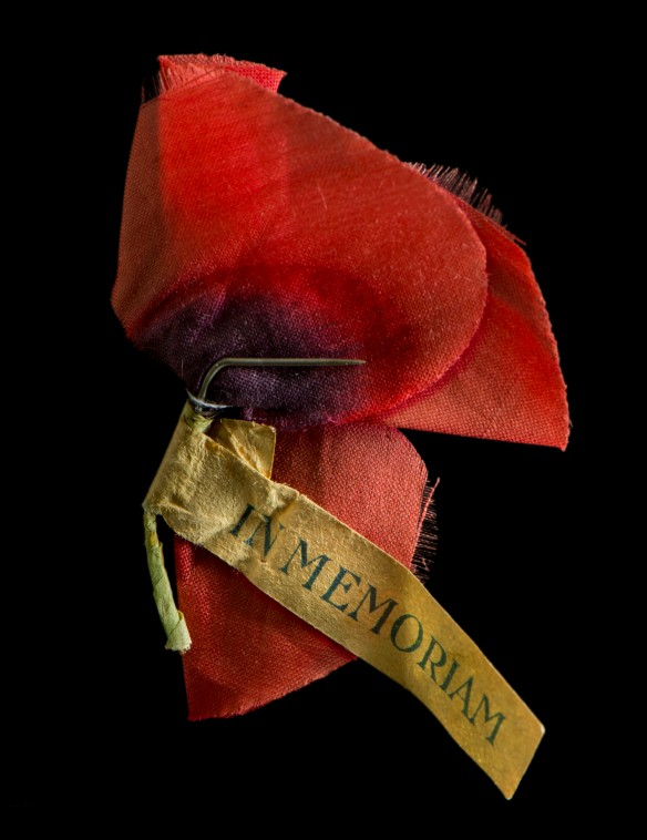 One of three poppies from work titled In Memoriam on display at MTG Hawke's Bay Museum. Photorapher David Frost